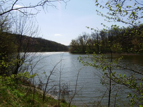 Панський ставок