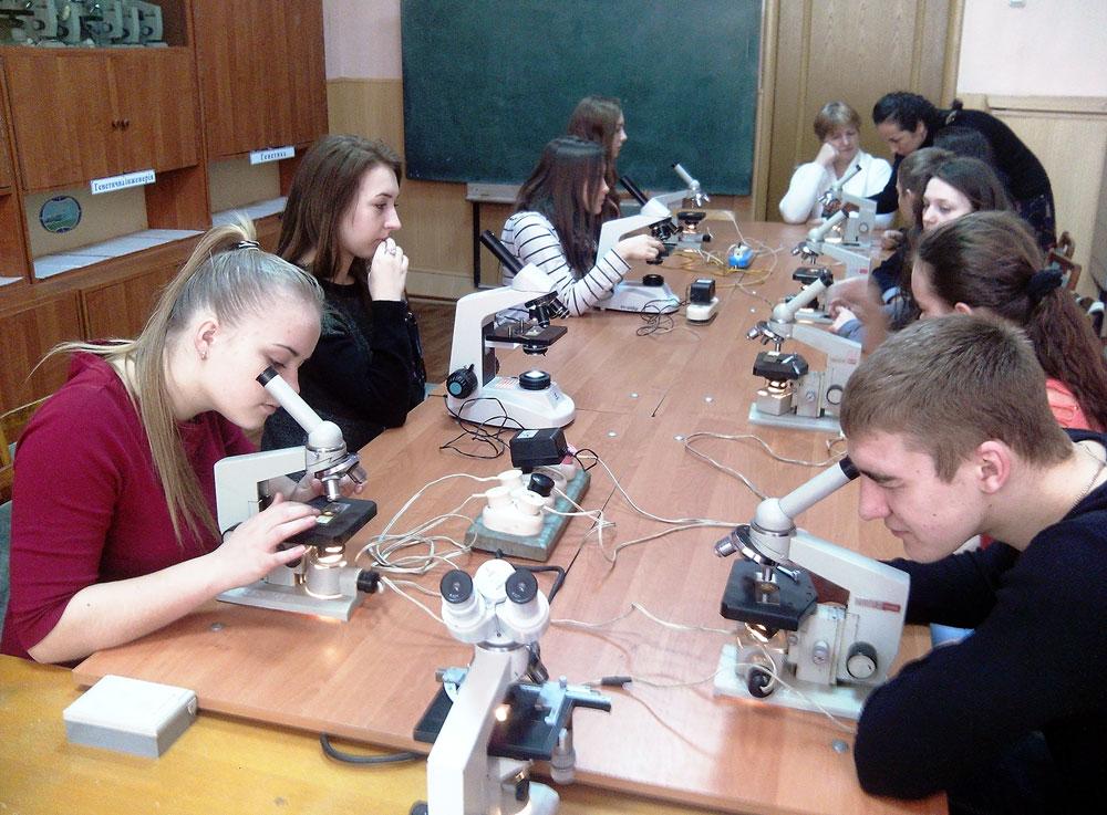 Робота учнів з фіксованими препаратами мушки дрозофіли